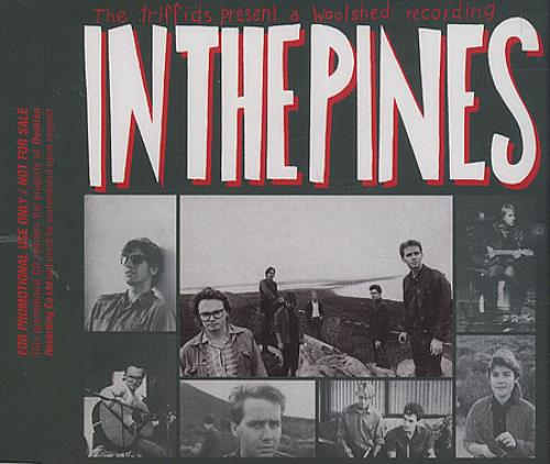 The Triffids (80s) In The Pines CD album (CDLP) UK TFICDIN395969