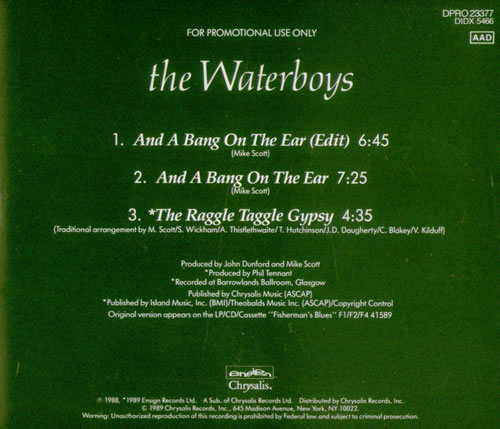 Waterboys And A Bang On The Ear 1989 USA CD single DPRO23377
