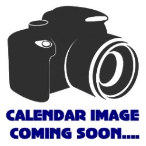 The Saturdays Official Calendar 2010 2010 UK calendar 138
