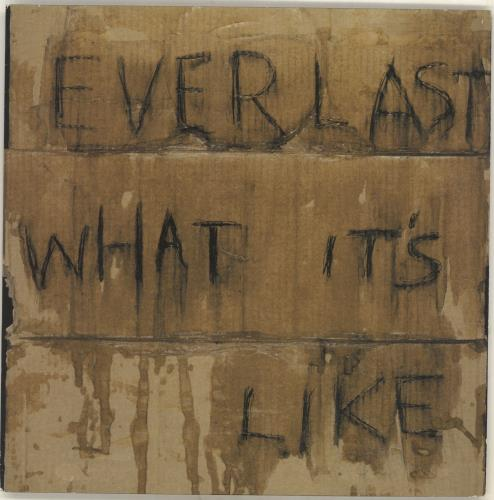 EVERLAST_WHAT%2BITS%2BLIKE-500733.jpg