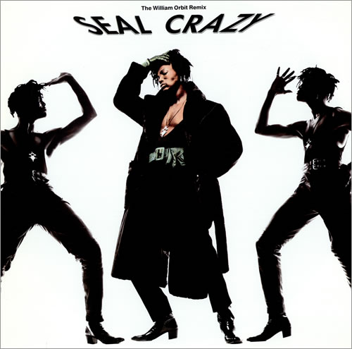 Seal Crazy Uk 12 Quot Vinyl Single 12 Inch Record Maxi