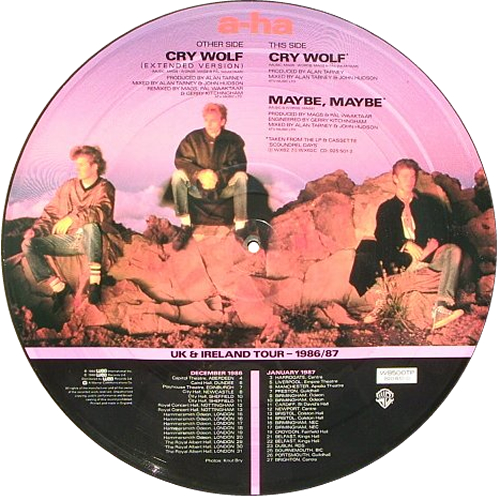 """A-Ha Cry Wolf 12"""" vinyl picture disc 12inch picture disc record UK AHA2PCR11960"""