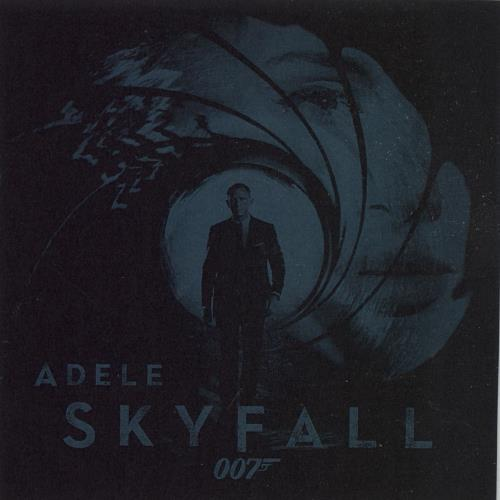 Adele Skyfall + Press Release CD-R acetate Japanese AYXCRSK665087