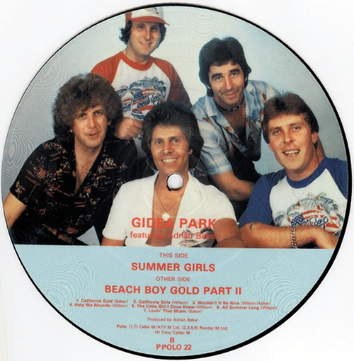"""Adrian Baker Beach Boy Gold Part II 7"""" vinyl picture disc 7 inch picture disc single UK AY47PBE561517"""