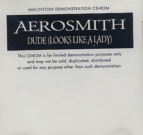 Aerosmith Dude (Looks Like A Lady) CD-ROM US AERRODU328593
