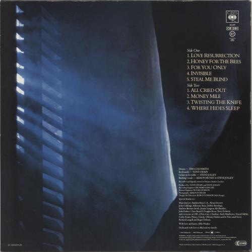 Alison Moyet Alf - Stickered (2-song) vinyl LP album (LP record) UK MOYLPAL698556