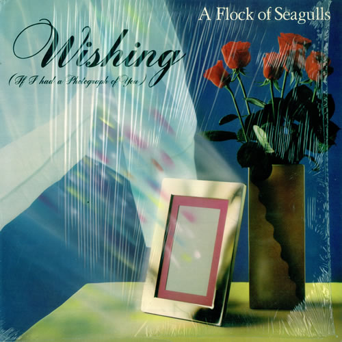 Image result for A Flock Of Seagulls – Wishing (If I Had A Photograph Of You)