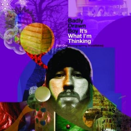 Badly Drawn Boy It's What I'm Thinking vinyl LP album (LP record) UK BDWLPIT527460
