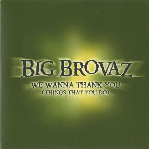 "Big Brovaz We Wanna Thank You [Things That You Do] CD single (CD5 / 5"") UK BVZC5WE514363"