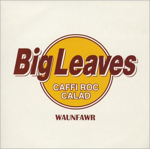 "Big Leaves Sly Alibi/ Double Trouble 7"" vinyl single (7 inch record) UK BIV07SL407950"