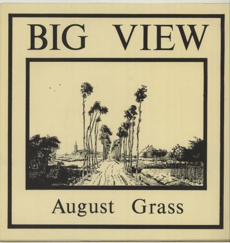 "Big View August Grass 7"" vinyl single (7 inch record) UK O6G07AU681949"