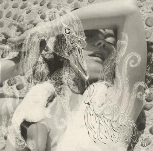 "Björk Aurora CD single (CD5 / 5"") French BJKC5AU195157"