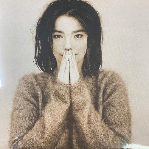 Björk Debut - Sealed vinyl LP album (LP record) German BJKLPDE767419