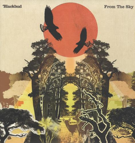 Blackbud From The Sky UK vinyl LP album (LP record) (367636)