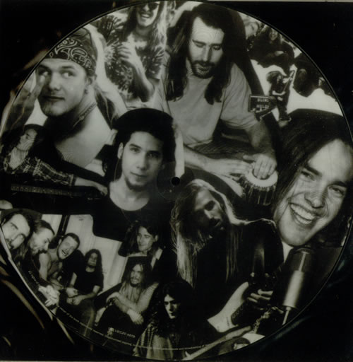 "Blind Melon Tones Of Home 12"" vinyl picture disc 12inch picture disc record UK BDM2PTO47628"