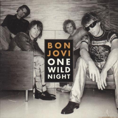 "Bon Jovi One Wild Night CD single (CD5 / 5"") German BONC5ON738293"