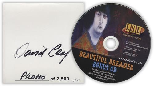 Brian Wilson Beautiful Dreamer - Autographed by David Leaf CD album (CDLP) US BWICDBE399960