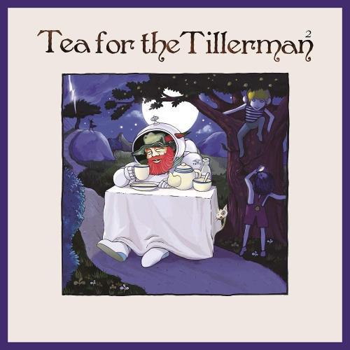 Cat Stevens Tea For The Tillerman 2 - Black Vinyl vinyl LP album (LP record) UK CTVLPTE752728