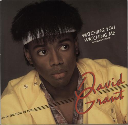 "David Grant Watching You Watching Me 12"" vinyl single (12 inch record / Maxi-single) UK D.G12WA664904"