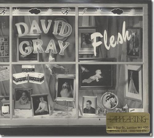 """David Gray Flesh CD single (CD5 / 5"""") UK DGRC5FL186769"""