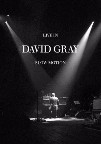 David Gray Live In Slow Motion DVD UK DGRDDLI354241