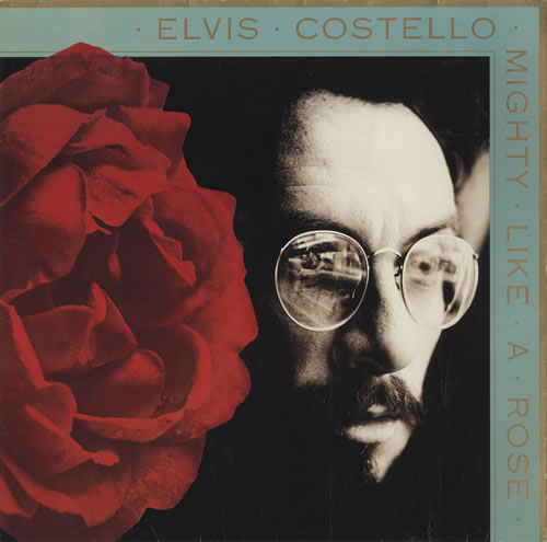 Elvis Costello Mighty Like A Rose vinyl LP album (LP record) UK COSLPMI245440