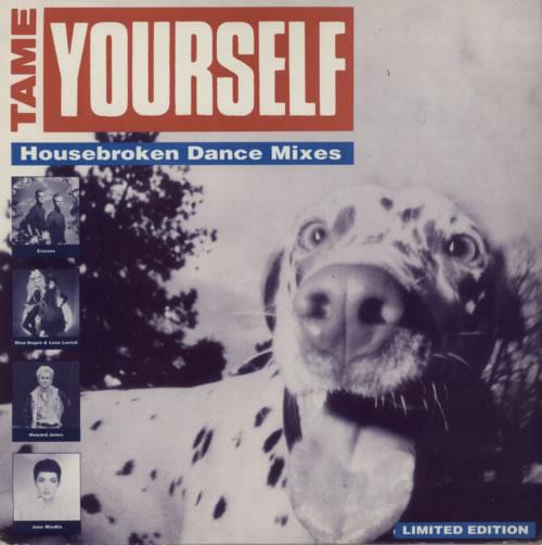 "Erasure Rage - Housebroken Dance Mixes 12"" vinyl single (12 inch record / Maxi-single) US ERA12RA02413"