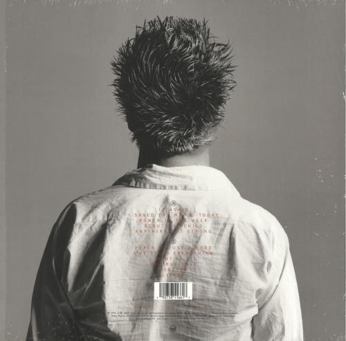 Eurythmics Peace - 180gm vinyl LP album (LP record) UK EURLPPE717668