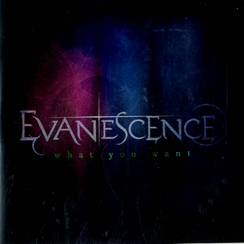 Evanescence What You Want CD-R acetate UK ESCCRWH589159