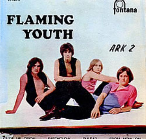 "Flaming Youth Ark 2 EP 7"" vinyl single (7 inch record) Portugese FYH07AR278989"