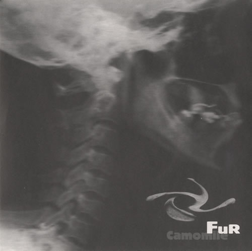 "Fur Camomile 7"" vinyl single (7 inch record) UK FU407CA509500"