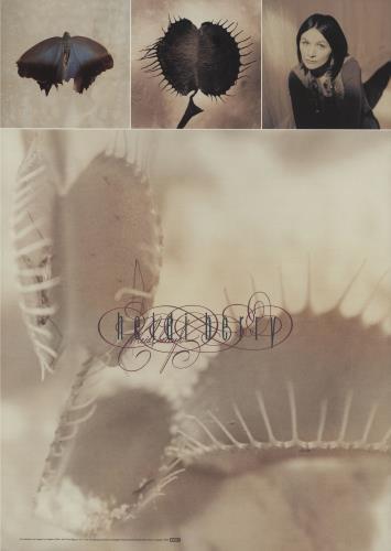 Heidi Berry Heidi Berry poster UK IBYPOHE681201