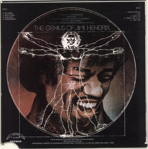 Jimi Hendrix The Genius Of Jimi Hendrix 2-LP vinyl record set (Double Album) US HEN2LTH689931