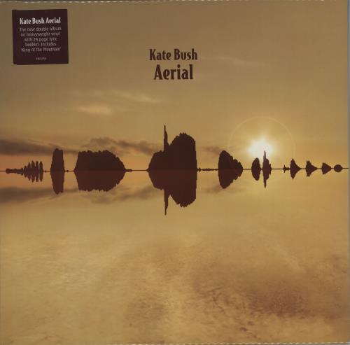 Kate Bush Aerial 2-LP vinyl record set (Double Album) UK BUS2LAE526944