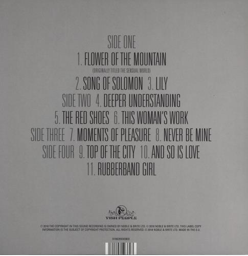 Kate Bush Directors Cut 2-LP vinyl record set (Double Album) UK BUS2LDI750523