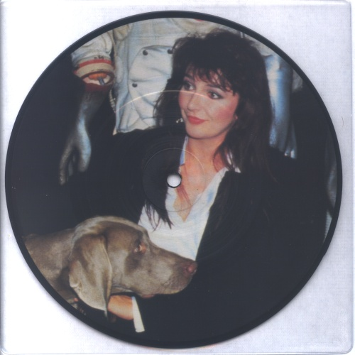 "Kate Bush Interview 85 7"" vinyl picture disc 7 inch picture disc single UK BUS7PIN456422"