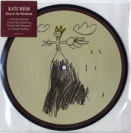 """Kate Bush King Of The Mountain 7"""" vinyl picture disc 7 inch picture disc single UK BUS7PKI340940"""