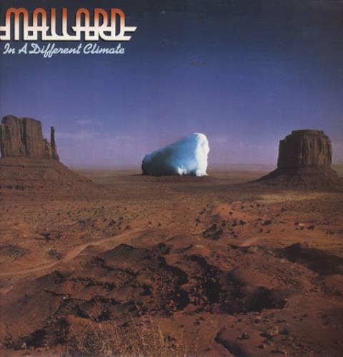 Mallard In A Different Climate vinyl LP album (LP record) US RLLLPIN211637