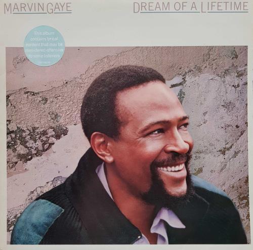 Marvin Gaye Dream Of A Lifetime vinyl LP album (LP record) UK MVGLPDR374713