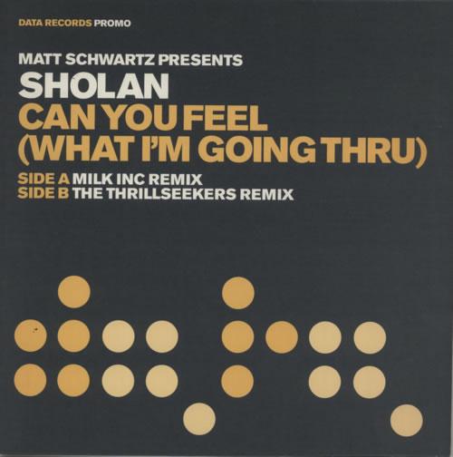 "Matt Schwartz presents Sholan Can You Feel (What I'm Going Thru) 12"" vinyl single (12 inch record / Maxi-single) UK MFX12CA355943"