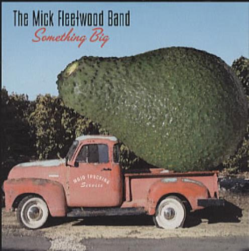 Mick Fleetwood Something Big CD album (CDLP) UK MFLCDSO303492