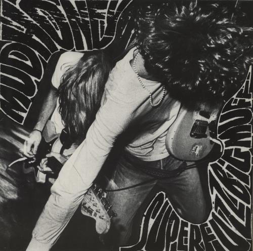 Mudhoney Superfuzz Bigmuff - EX vinyl LP album (LP record) German MUDLPSU277339