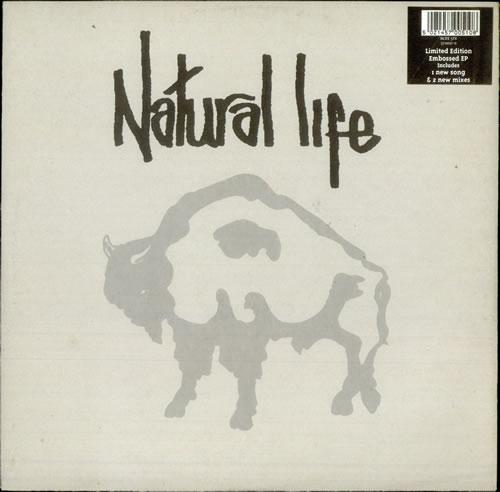 """Natural Life Natural Life 12"""" vinyl single (12 inch record / Maxi-single) UK NF912NA517808"""