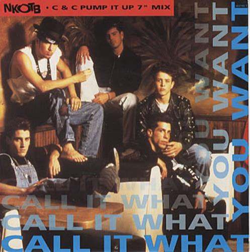 """New Kids On The Block Call It What You Want 7"""" vinyl single (7 inch record) UK NKO07CA303540"""