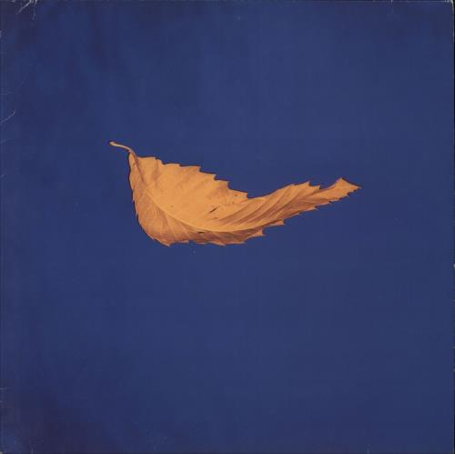 "New Order True Faith - EX 12"" vinyl single (12 inch record / Maxi-single) UK NEW12TR696784"