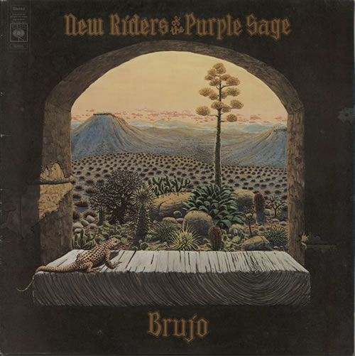 New Riders Of The Purple Sage Brujo vinyl LP album (LP record) UK NRPLPBR583489