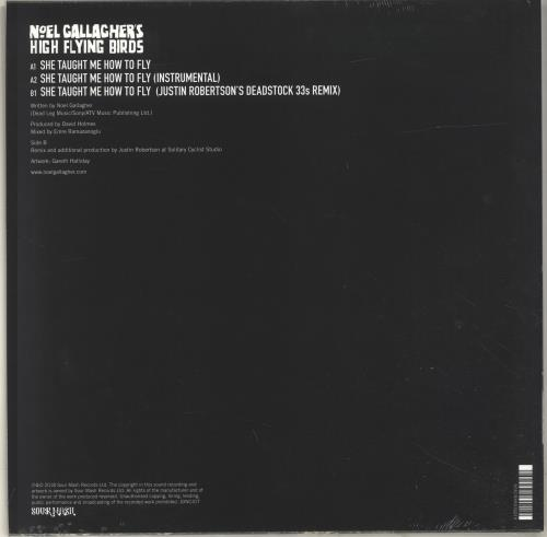 """Noel Gallagher She Taught Me How To Fly - Blue Vinyl - Sealed 12"""" vinyl single (12 inch record / Maxi-single) UK NGL12SH697158"""