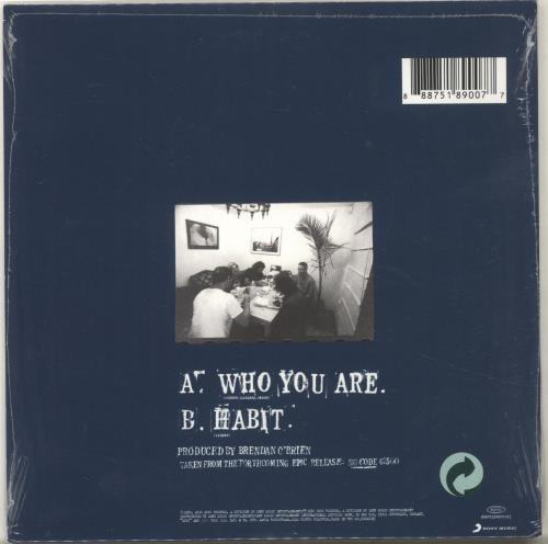 "Pearl Jam Who Are You 7"" vinyl single (7 inch record) UK PJA07WH703565"
