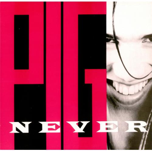 "Pig Never For Fun 12"" vinyl single (12 inch record / Maxi-single) US PIG12NE416755"