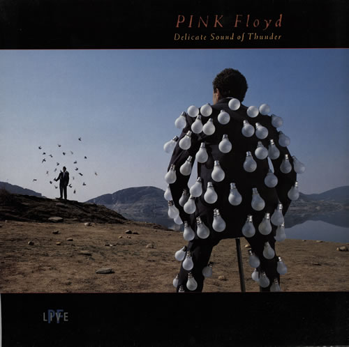 Pink Floyd Delicate Sound Of Thunder - VG 2-LP vinyl record set (Double Album) UK PIN2LDE579246